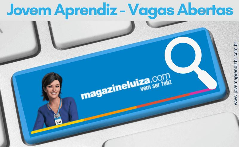 ovem Aprendiz Magazine Luiza