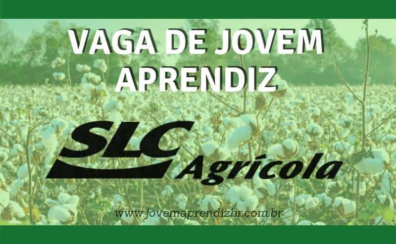 Jovem Aprendiz SLC Agrícola